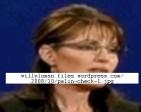 Palin 04